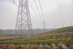 Pylons in flowering farmland Royalty Free Stock Image