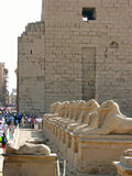 By the pylons of Karnak Temple Stock Photos