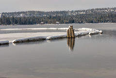 Pylons reflecting in the water of a lake in the winter with snow Stock Image