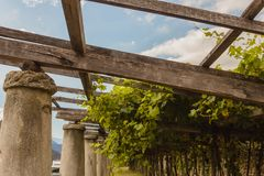 The typical agricultural architecture of the vineyards of Carema. Pylons, stone and lime columns and chestnut poles support the pergola of rows of grapes Royalty Free Stock Photos