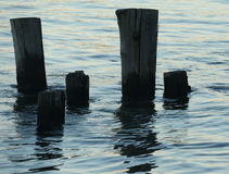 Pylons in Water at Sunset Stock Image