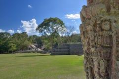 Pyramid in the ancient Mayan city of Copan in Honduras. Stock Photos
