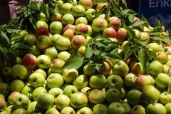 Pyramid of apples Royalty Free Stock Photos