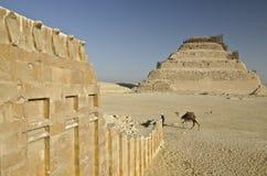 Pyramid av Djoser och tempelvägg med kobror i Saqqara royaltyfri bild