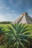 Pyramid av Kukulcan Arkivbild
