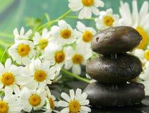 Pyramid of black stones, chamomile flowers Stock Photos