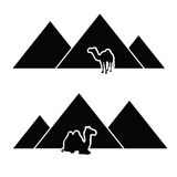 Pyramid with camel art  Stock Photo