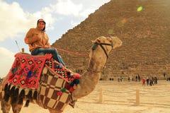 pyramid and camel rider Royalty Free Stock Photo