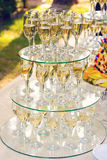 Pyramid of champagne glasses during catering at Royalty Free Stock Photo