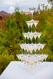Pyramid of champagne glasses Stock Photo