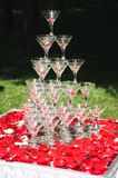 Pyramid of champagne on white table with rose petals stock image
