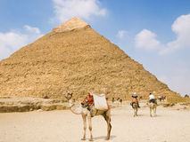 Pyramid of Chefren Stock Photos