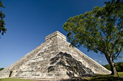 Pyramid Chichen Itza Mexico. The big pyramid in Chichen Itza Mexico Stock Photos