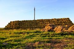 The pyramid is composed of hay balls in the rays of sunset Royalty Free Stock Image