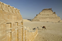 Pyramid of Djoser and Temple Wall with Cobras in Saqqara Royalty Free Stock Image