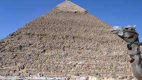 Pyramid. Egypt Royalty Free Stock Photo