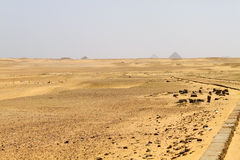 Pyramid field at Saqqara Royalty Free Stock Images