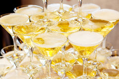 Pyramid of glasses with champagne close up Royalty Free Stock Photos