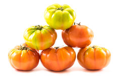 A pyramid of homegrown tomatoes (Solanum lycopersicum) Stock Photos