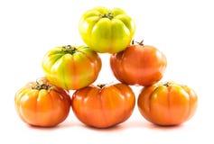 A pyramid of homegrown tomatoes (Solanum lycopersicum) Stock Photos