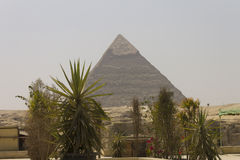 Pyramid of Khafre with plants in front of it Stock Photo