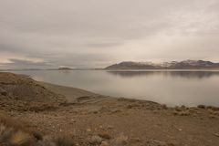 Pyramid Lake Stock Photos