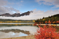 Pyramid Lake and Fall Color, Jasper Royalty Free Stock Images