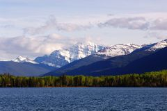 Pyramid lake and mountain Stock Image