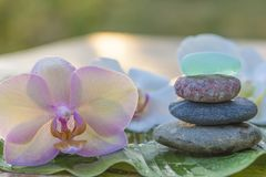 Pyramid of beautiful spa stones and orchid flowers. Pyramid of massage stones and orchid flowers on sunlight stock image
