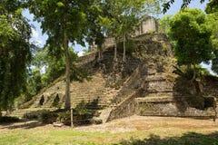 Pyramid at Maya archeological site of Dzibanche Mexico. Pyramid building at the Maya archeological site of Dzibanche Mexico stock images