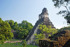 Pyramid in the Mayan city-state of Tikal Stock Photos