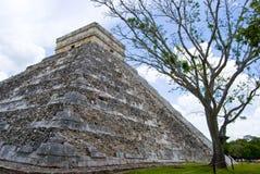 Pyramid in Mexico Royalty Free Stock Photos