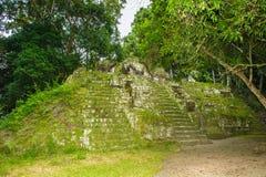 Pyramid of Mundo Perdido Stock Image