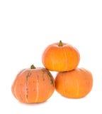 Pyramid of orange pumpkins Royalty Free Stock Images