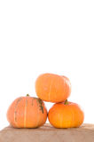 Pyramid of orange ripe pumpkins Stock Photos
