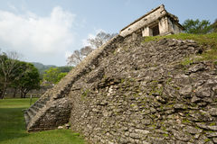 Pyramid at Palenque,Chiapas,Mexico Stock Photography