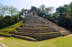 Pyramid. Palenque, Mexico Stock Image
