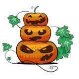 Pyramid of pumpkins Stock Image