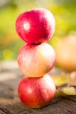 Pyramid from red apples on wood Royalty Free Stock Photo