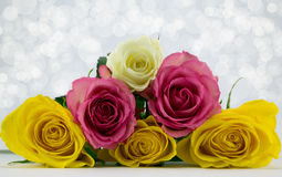 Pyramid of roses. Pyramid of pink,yellow and white roses on a diffused sparkle background Stock Photos