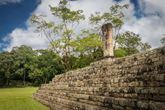 Pyramid stairs and Carved Stella in Mayan Ruins - Copan Archaeological Site, Honduras Stock Photos
