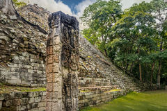 Pyramid stairs and Carved Stella in Mayan Ruins - Copan Archaeological Site, Honduras Stock Images