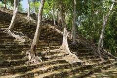 Pyramid stairs at Kinichna ruins in Mexico stock photos