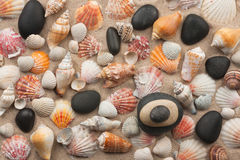 Pyramid stands on seashells and stones Royalty Free Stock Photography