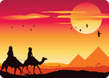 Pyramid Sunset. Camel trip in front of the pyramid landscape Stock Photos