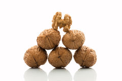 Pyramid of walnuts Royalty Free Stock Image