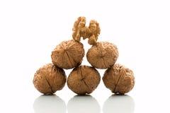 Pyramid of walnuts Royalty Free Stock Image