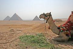 Pyramide an der Mittagspause lizenzfreie stockfotos