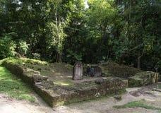 Pyramide et le temple en parc de Tikal Objet guidé au Guatemala avec les temples maya et les ruines de cérémonial Tikal est un an Images libres de droits