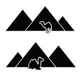 Pyramide mit Kamelkunst Stockfoto